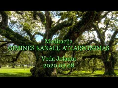 2020 03 08 Pranešimas ašrame. Meditacija: giminės kanalų atlaisvinimas.