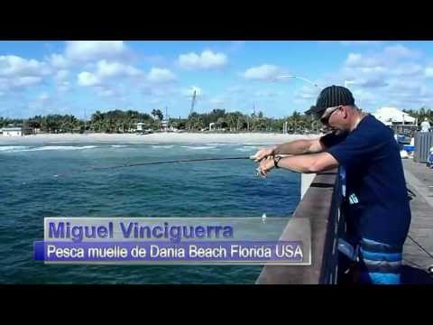 FISHING IN DANIA BEACH PIER FLORIDA USA