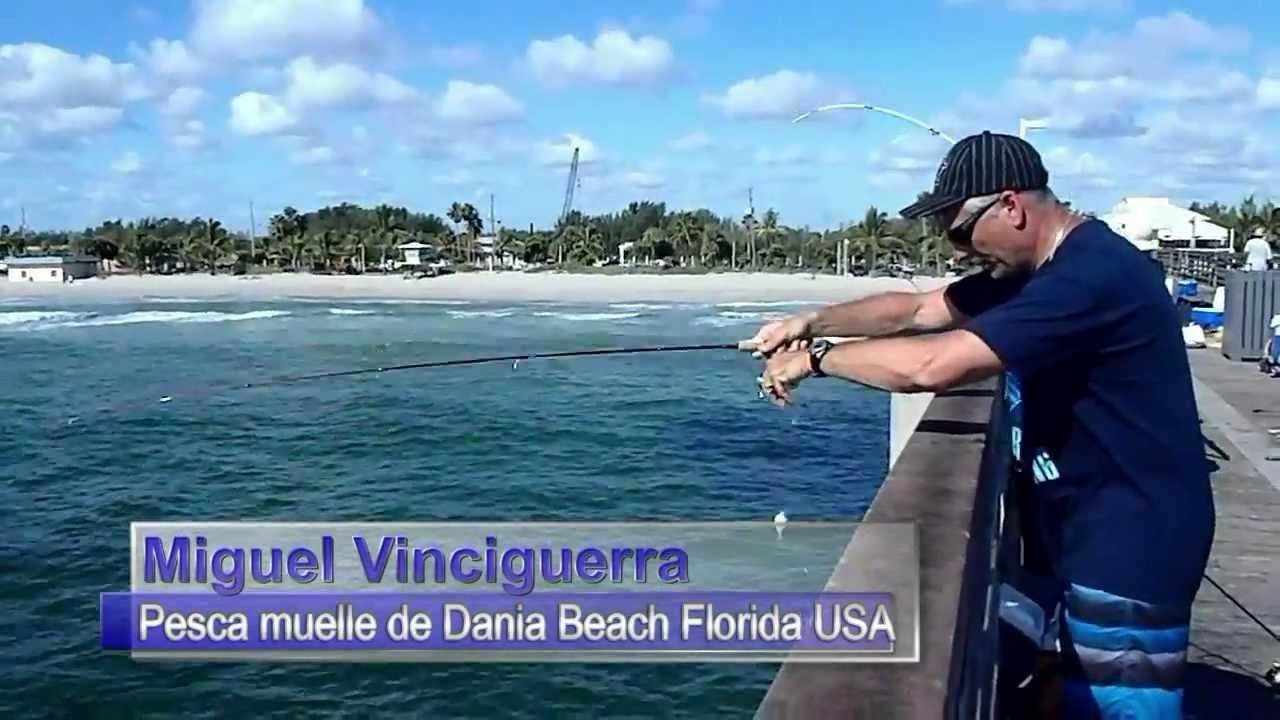 Fishing In Dania Beach Pier Florida Usa Youtube