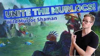 Hearthstone | Unite the Murlocs | Wild Quest Murloc Shaman | Rastakhan