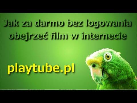 Czerwony pająk 2015 Lektor PL darmowy film