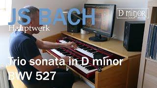 JS BACH - Trio Sonata n°3 in d minor BWV 527 - Hauptwerk Raszczyce