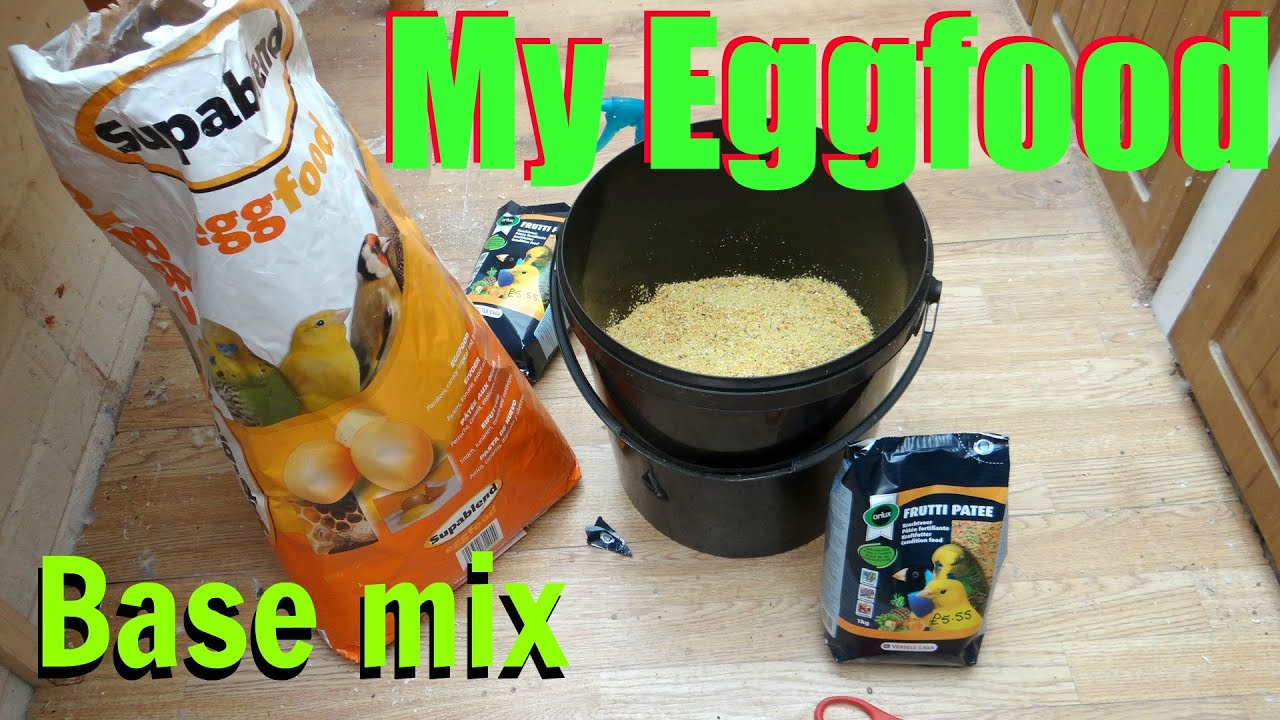 Making eggfood for birds youtube forumfinder Images