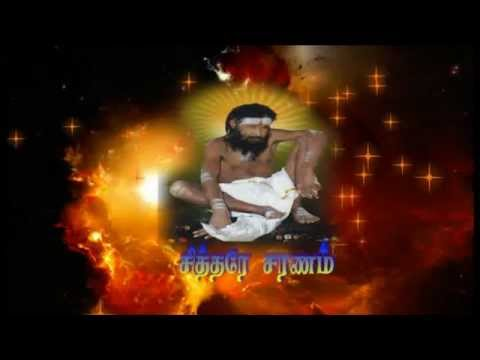 sakkadai Siddhar Paadal (சித்தர் பாடல்): sakkadai siddhar paadal paadal varigal palanikalidasan