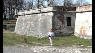 Підгорецький замок(, 2013-04-16T19:39:03.000Z)