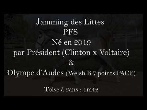 JAMMING DES LITTES