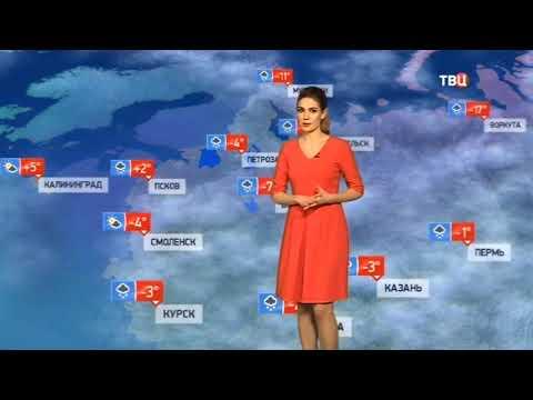 Погода сегодня, завтра, видео прогноз погоды на 2.3.2019 в России и мире