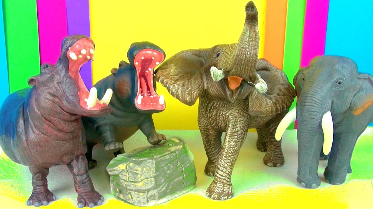 Wild animals kids toy collection elephants and hippopotamus kids zoo wild animals kids toy collection elephants and hippopotamus kids zoo toys review funny ending youtube publicscrutiny Gallery