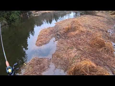 Minter Creek Chum Float Fishing