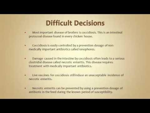 Dr. John Glisson - Antibiotic Stewardship Updates by Species: Poultry