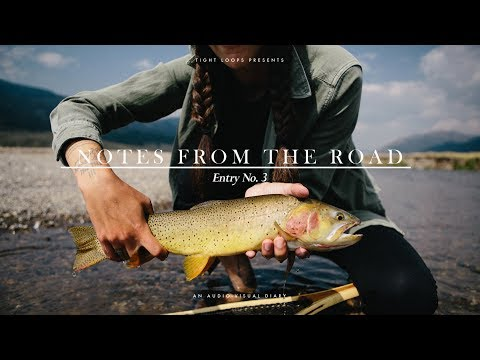 NOTES FROM THE ROAD: Entry No. 3 || FLY FISHING YELLOWSTONE || VAN LIFE 2017