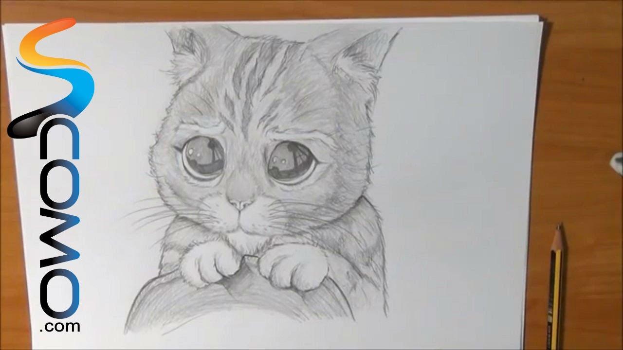 Dibujar al Gato con Botas de Shrek - YouTube