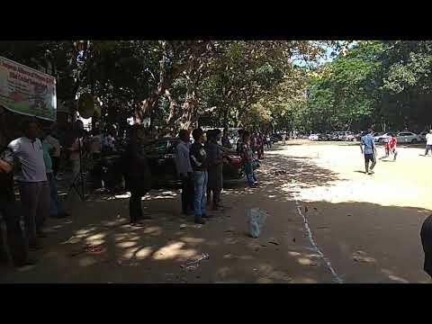 SAF Mini Cricket Tournament 2017