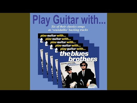 Everybody needs somebody to love instrumental blues brothers