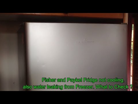 Fisher And Paykel Fridge Not Cooling /Water Leak /Troubleshooting/How To DIY