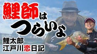 鯉師はつらいよ 鯉太郎江戸川鯉日記