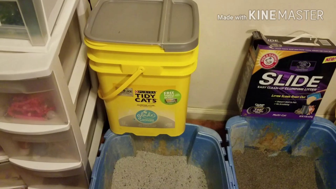 smiley360 arm and hammer slide cat litter review - Cat Litter Reviews