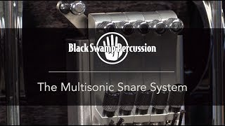 BSP Multisonic Strainer Demo