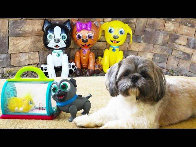 Perrito Hamilton y Bingo de Puppy Dog Pals atrapan a Marty | Pretend play para niñas y niños