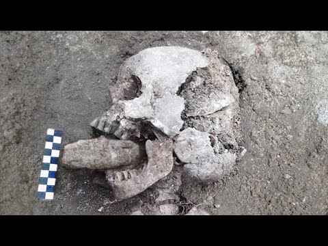10 Most Bizarre Artifacts Recently Found!