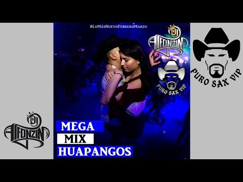 Mega Mix Huapangos 2017 Pa' Zapatear