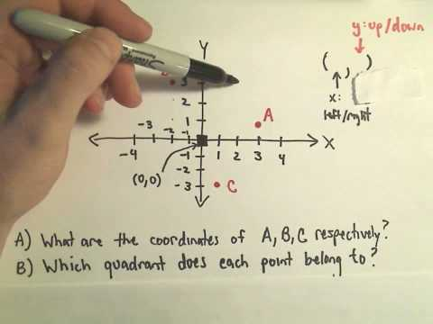 The Cartesian Coordinate System - The Basics!