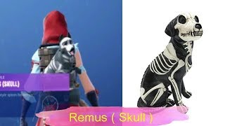 Fortnite Pets In Real Life - New