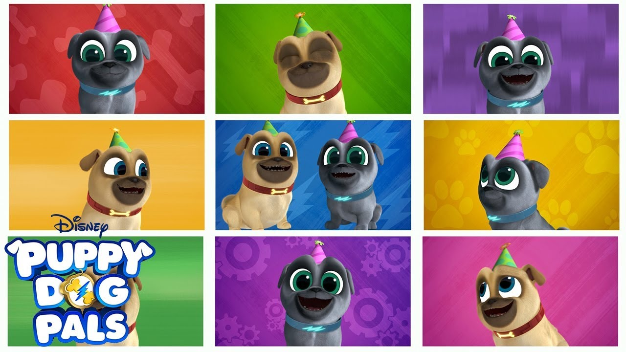 Bingo And Rolly S Birthday Music Video Puppy Dog Pals Disney Junior Youtube