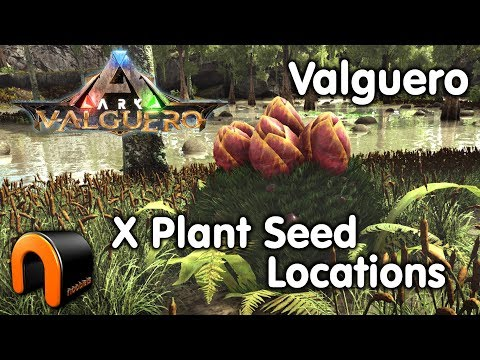 ARK VALGUERO X Plant Seeds Location GPS
