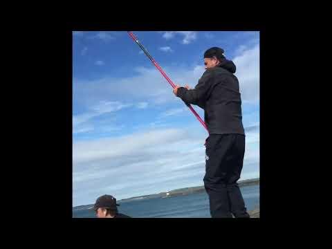 Holyhead Huss Fishing