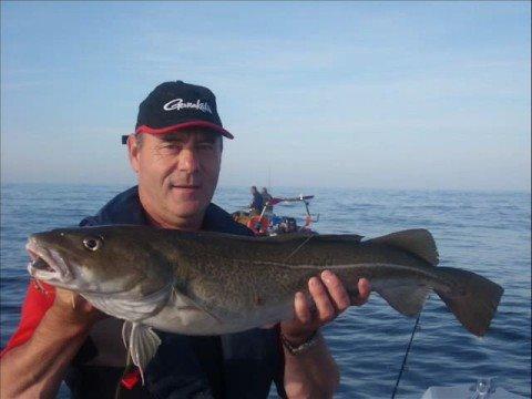 p 234 che en mer du nord vissen op kabeljauw
