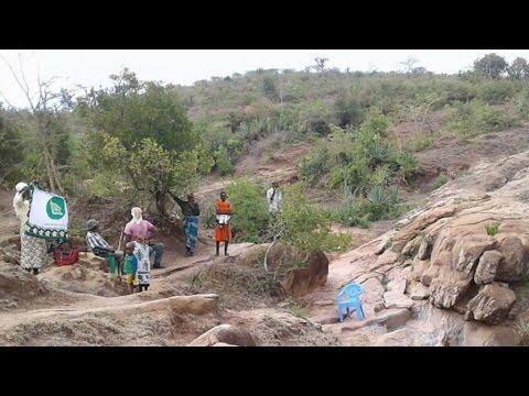 """La sécheresse frappe le Kenya : """"Tout est mort maintenant..."""""""