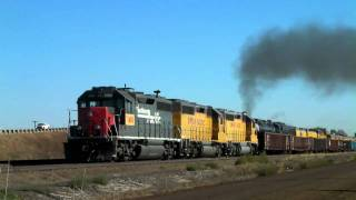 UP 3985 pulls the Ringling circus train Cheyenne to Denver 09/28/2010 ©