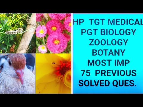 ¦TGT Medical ¦ PGT Biology ¦Most Imp 75 Questions | Zoology&Botany |Help 2 Crack HP Tgt Commission