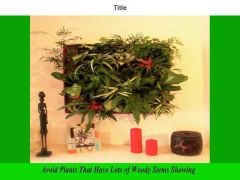 Indoor Vertical Gardening | Vertical Gardening | Diy Vertical Gardening |  Ideas | How To