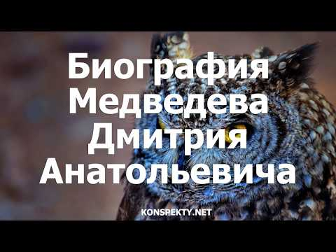 Биография Медведева Дмитрия Анатольевича