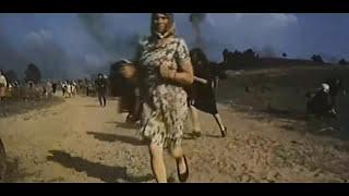 Черная береза (1977) Беларусьфильм