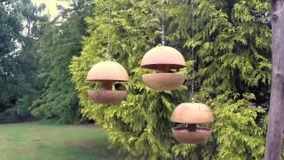Natural Wood Company - Oak Bird feeder sample