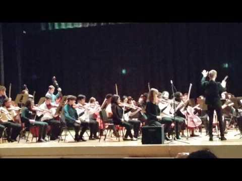 Special Music School Strings 2017-01