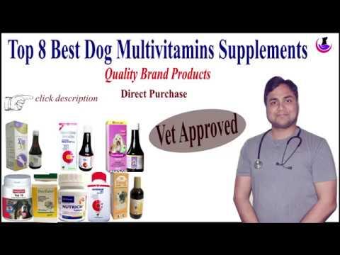 Dog Multivitamins Supplements II Best Brands II Hindi II dogandvet