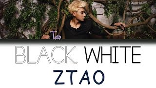 Скачать ZTAO 黃子韜 Black White AB CHN PIN ENG Color Coded Lyrics