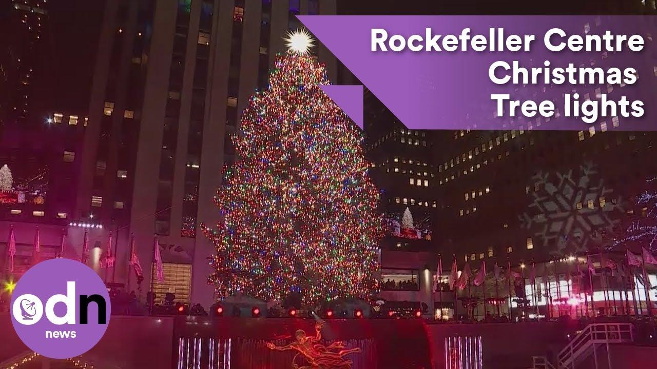 Purple Christmas Tree Lights.Rockefeller Centre Christmas Tree Lights Up New York