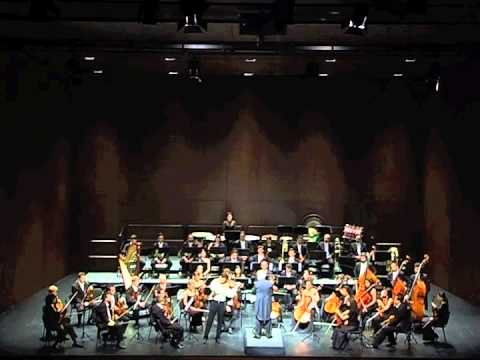 J. Sibelius Violin Concerto - Allegro Moderato