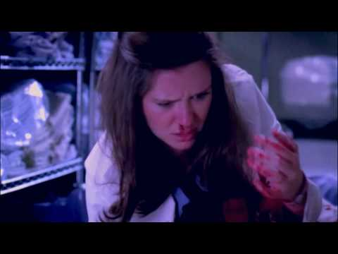 Grey's Anatomy Season 6 Finale - Nothing and Everything Red
