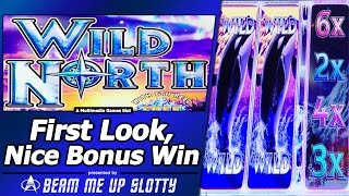 Wild North Slot - First Look, Free Spins Bonus in New Multimedia Games title