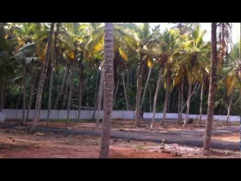 Buy Housing Plots In Trivandrum Near Kovalam And Vizhinjam
