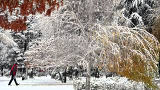 TOMISLAV IVČIČ  Pada prvi snjeg