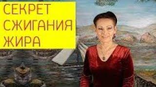 Секрет сжигания жира в любом возрасте на вкусном многообразном питании  Галина Гроссманн
