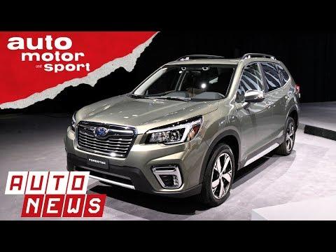 Subaru Forester (2018): Nippon-Förster neu aufgelegt - NEWS | auto motor und sport