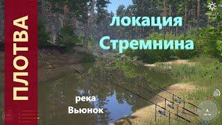 Русская рыбалка 4 - река Вьюнок - Плотва перед корягой